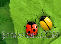 2 Many Bugs játék