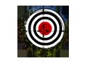 50 Targets Játékok
