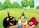 Angry Birds of Artillery Adventure Játékok