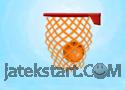 Basket Ball - A New Challenge Játékok