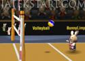 BunnyLimpics Volleyball 2012