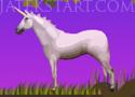 CLOP lovas ügyességi játékok