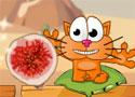Cat 4 Around Africa etesd meg a cicát