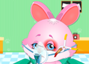 Cute Bunny Face Injury műts nyuszit