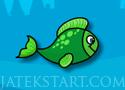 Fish Connection halas zuhatagos