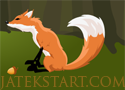 Forest Run szedj össze élelmet a rókával