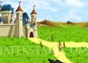 Protect King Castle védd meg a kastélyt