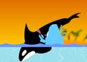 Blackfish Játékok