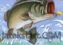 Fishing Champion játék