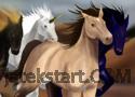 Horse Racing játék