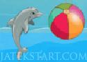 My Dolphin Show Játék