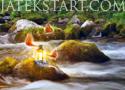 River Fantasy rakd ki a képet