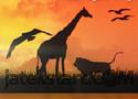 Wild Safari Játékok